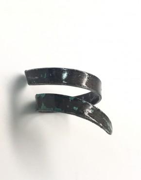 Ring4.1
