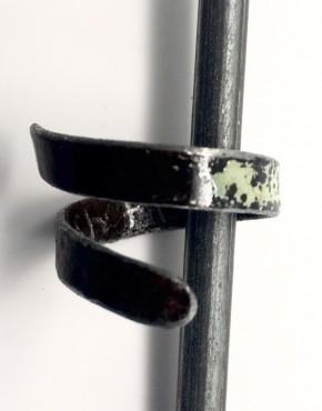 Ring9.1